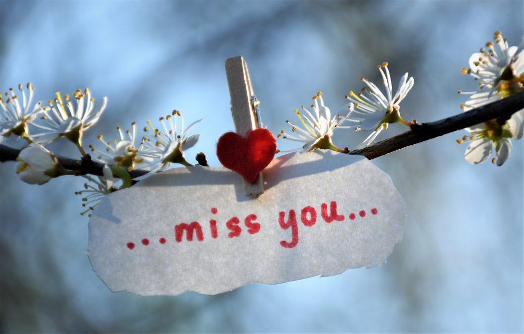 Resomeren - uitleg wat is resomeren - bloem met miss you als tekst